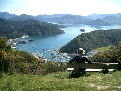 View over Picton ferry port